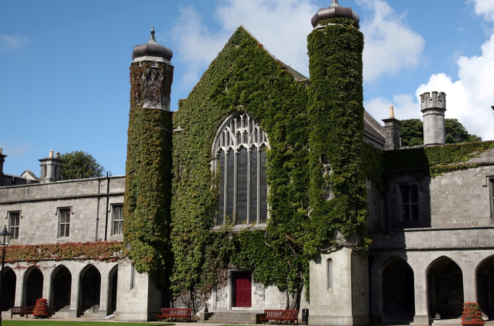 Ирландский университет