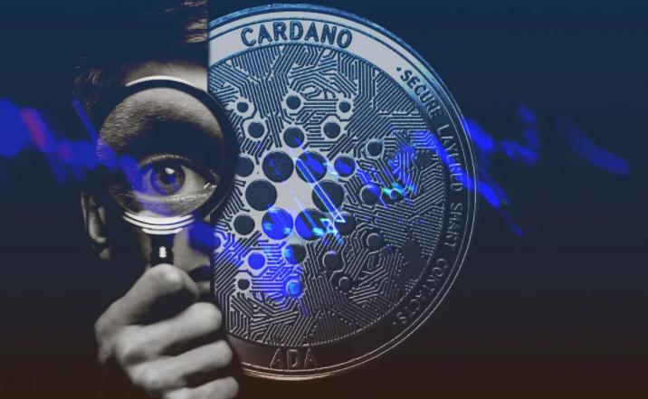 Основатель Cardano