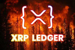 Ripple XRPL