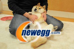Dogecoin и Newegg