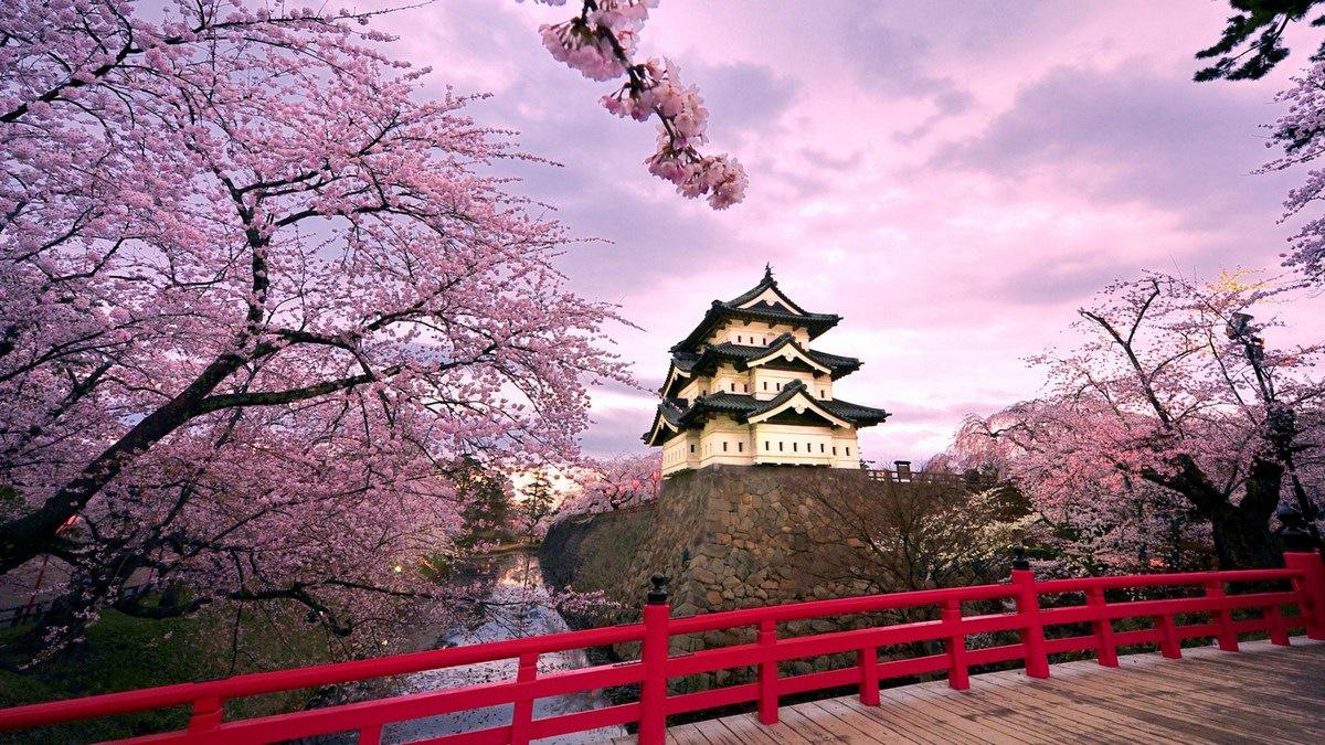 Япония и стейблкоины: ситуация накаляется